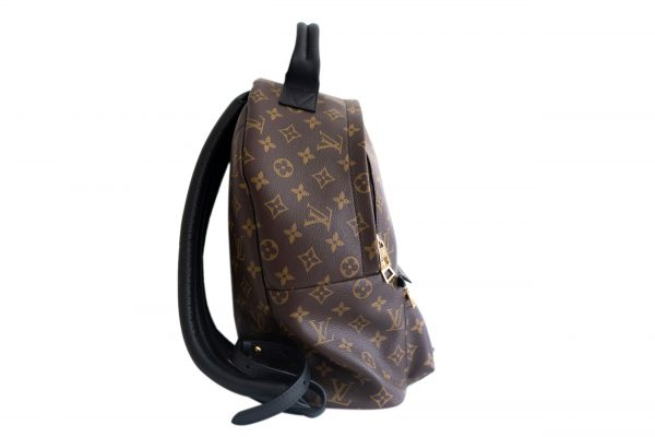 louis vuitton monogram canvas palm springs backpack mm masked