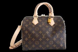 Rent Louis Vuitton Bag